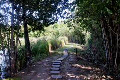 bakwena-day-spa-the-venue-country-hotel-and-spa-walking-path