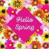 Spring Spa Special