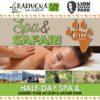 Bakwena Day Spa, The Venue Country Hotel & Spa, Hartbeespoort Dam Spa, Harties Spa, Hartbeespoort Dam Massage, Spa Specials, Couples Spa Specials, Lion & Safari Park, Spa & Safari, Game Drive