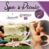 Spa & Picnic Special